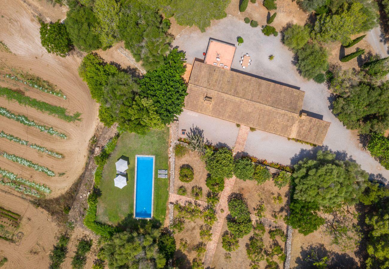 Landhaus in Manacor - Ses Cases Son Blat