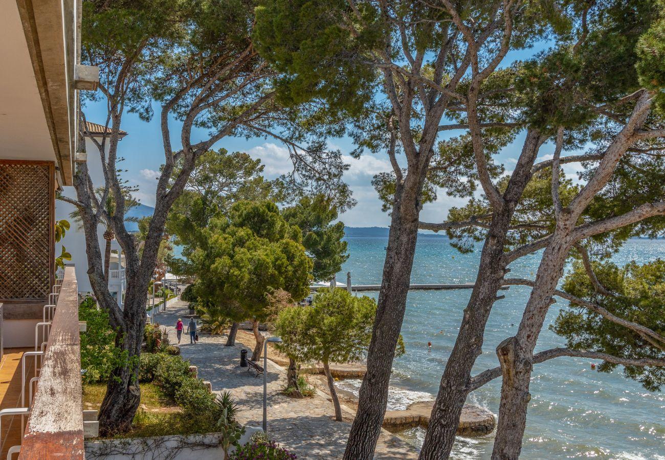 Ferienwohnung in Port de Pollença - Bellveure 1, Apartamento 5StarsHome Mallorca